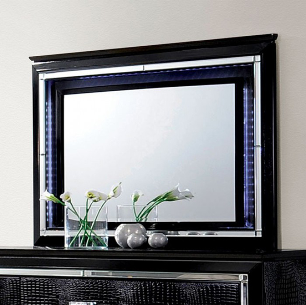 Contemporary Style Mirror , Black